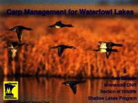 Carp Management for Waterfowl Lakes [Presentation]
