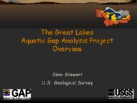 The Great Lakes Aquatic Gap Riverine Project Overview [Presentation]