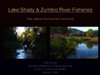 Lake Shady & Zumbro River Fisheries: How habitat influences fish community [Presentation]