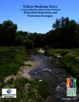 Yellow Medicine River and Surrounding Direct Minnesota River Tributaries Watershed Restoration and Protection Strategies