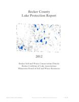 Becker County Lake Protection Report