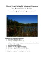 Siting of Wetland Mitigation in Northeast Minnesota Issues, Recommendations, and Alternatives