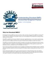What Are Shoreland BMPs?